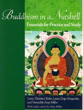 Buddhism in a Nutshell2